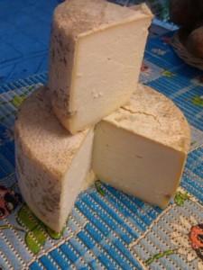 formaggio stagionato della azienda agricola La Marpea
